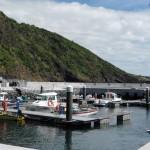 GNR apreende grande quantidade de peixe em São Jorge (c/audio)