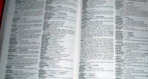 Governo dos Açores promove Cursos de Língua Portuguesa para Imigrantes