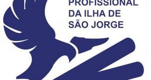 Situação da Escola Profissional debatida novamente na Assembleia Municipal das Velas
