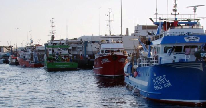 Governo Regional quer reduzir o prazo de pagamento dos apoios do FUNDOPESCA