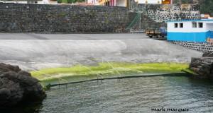 """Zonas balneares das Velas devem """"estar em condições"""" de ser utilizadas a 1 de julho"""