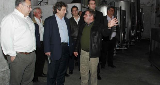 """""""Darei grande prioridade à valorização da marca Açores no Parlamento Europeu"""", afirmou Ricardo Serrão Santos"""