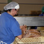 TSD/Açores propõem aumento do salário mínimo regional para 522 euros