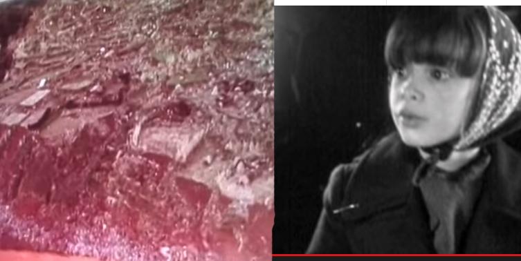 A 01 de janeiro de 1980 a terra tremeu