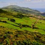 União de Cooperativas de São Jorge quer passar a pagar aos produtores a 60 dias