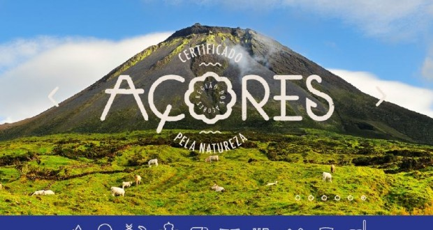 """Adesão ao selo """"Marca Açores – Florestas"""" já está disponível online"""
