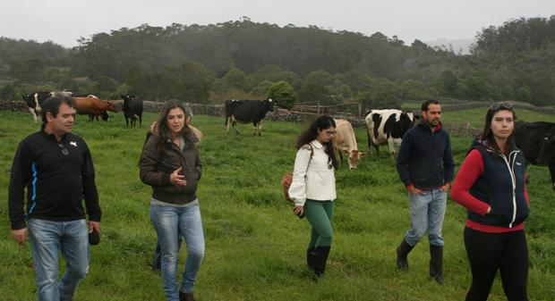 CDS-PP pede debate de urgência sobre o fim do regime de quotas leiteiras