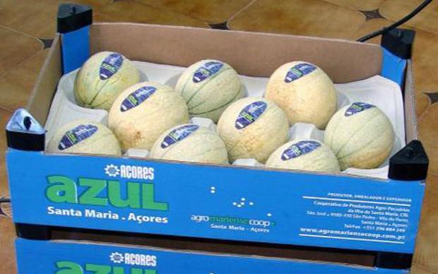 """Reconhecimento da Meloa de Santa Maria como produto IGP """"não é ponto de chegada, mas de partida"""", afirma Fernando Sousa"""