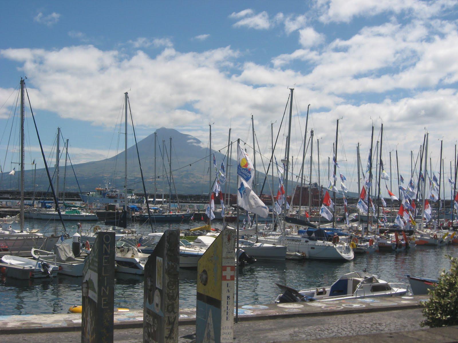 PJ detém mais de uma tonelada de cocaína dissimulada num veleiro no Faial