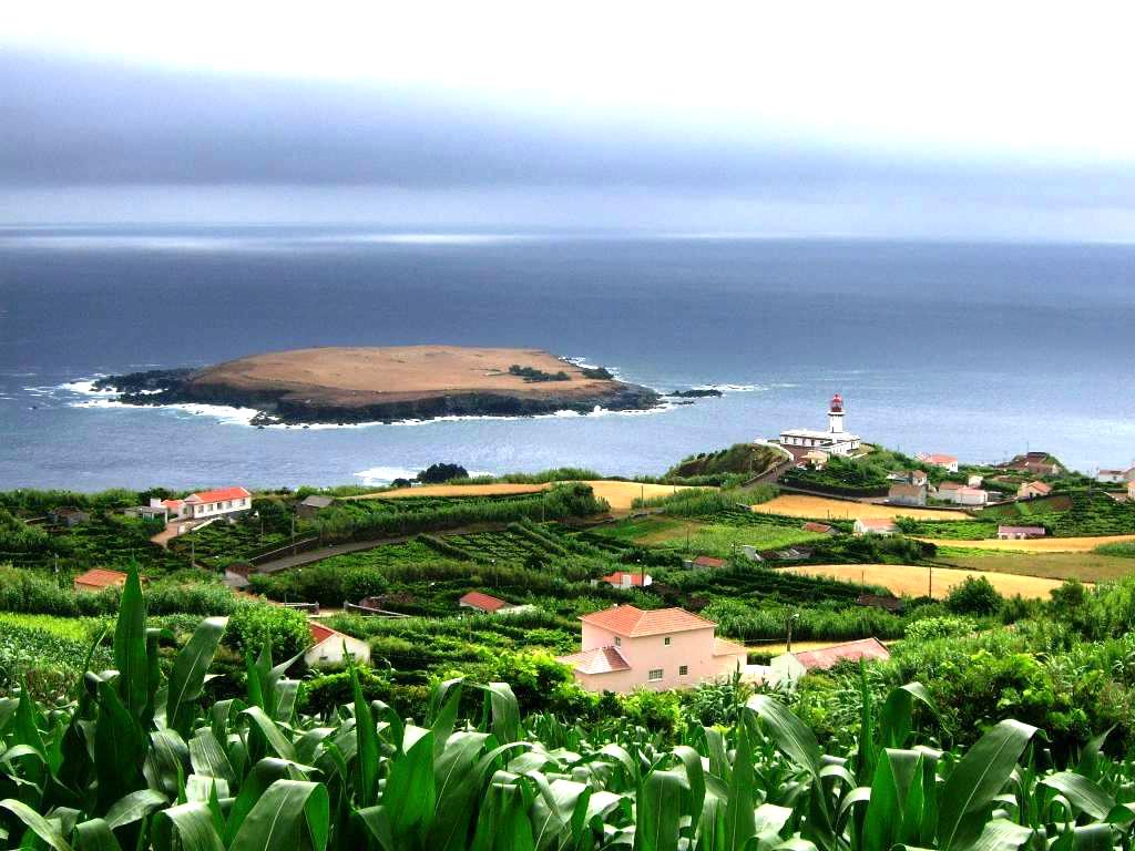 Carne de Bovino de São Jorge vai chegar mais longe: Antigas instalações de Fumeiro de Santo Antão vão dar lugar a uma Sala de Desmancha (c/áudio)