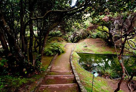 Banco de Sementes dos Açores selecionado para o Global Seed Challenge