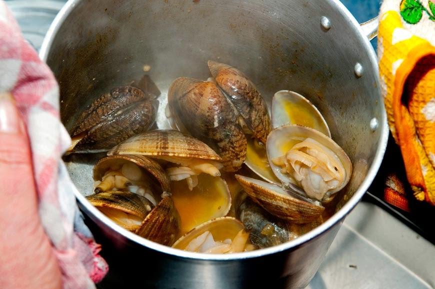 """Amêijoas de São Jorge são consideradas """"maravilha gastronómica"""" (Reportagem c/áudio)"""