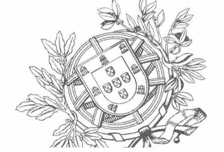 Ministério Público garante abertura de inquérito criminal e informa que ainda não recebeu nenhuma denúncia sobre alegados maus tratos em valência da ilha de S.Jorge