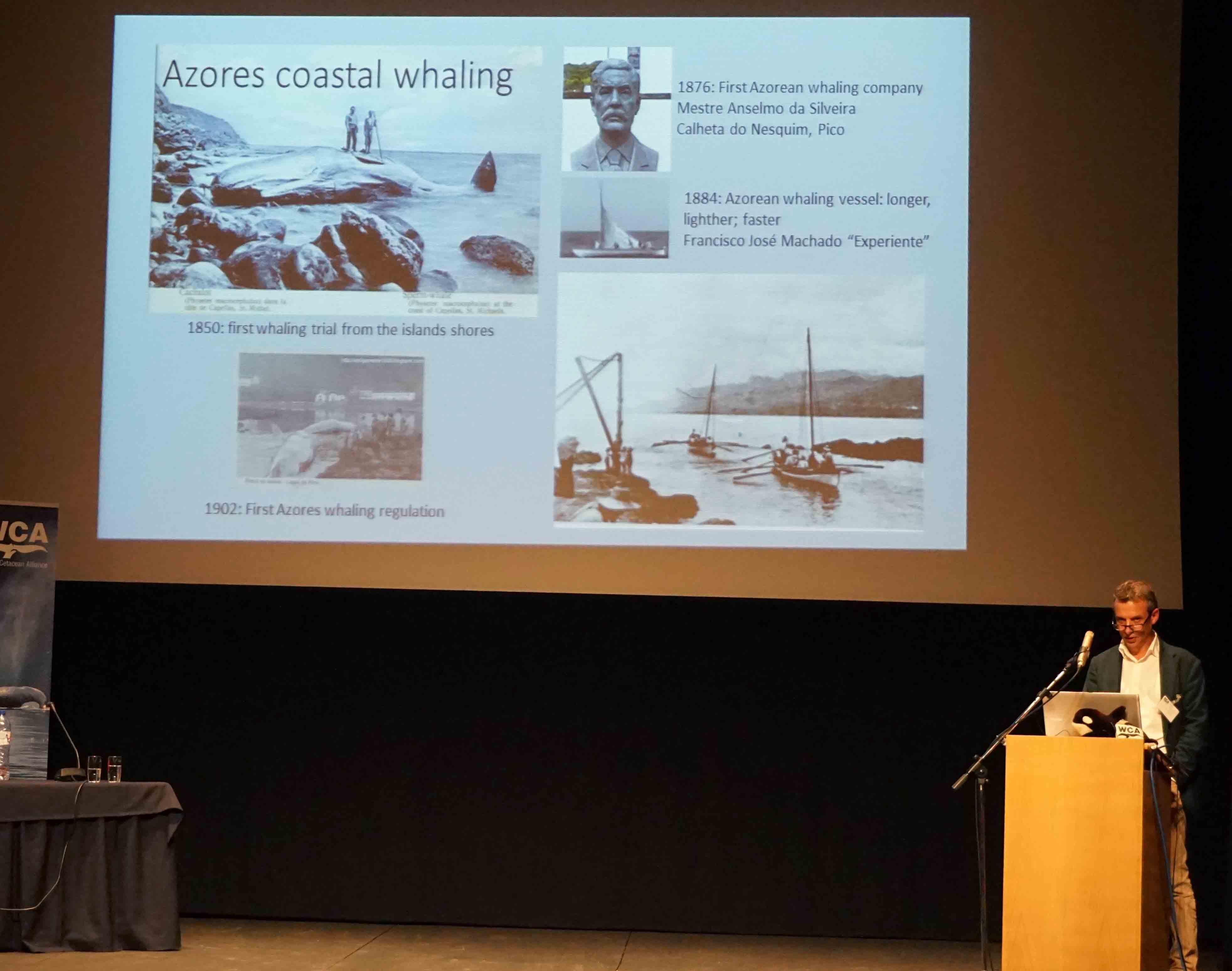 Cachalotes marcam cultura dos Açores de forma indelével, afirma Diretor Regional dos Assuntos do Mar