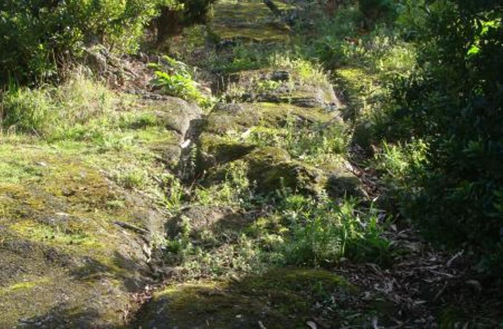 CDS quer preservar as relheiras dos Açores e potenciá-las como produto turístico específico da Região – a proposta foi hoje aprovada