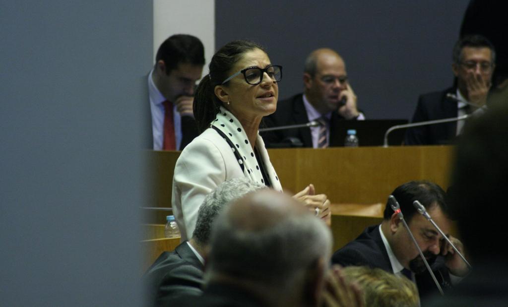 """Carta Regional de Obras Públicas transformou-se """"na Carta Regional das Obras de Propaganda"""", criticou Graça Silveira"""