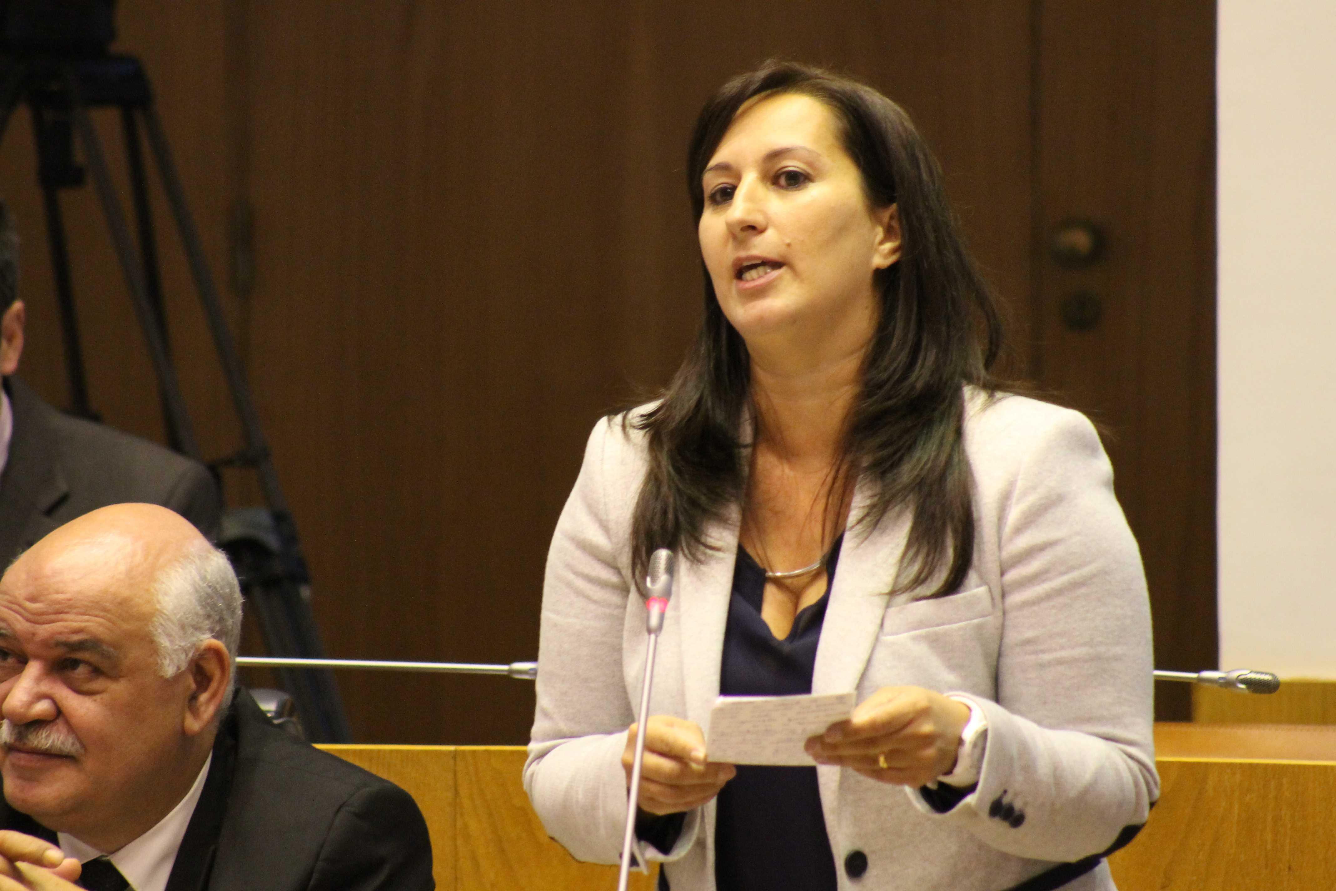 """""""Investimento na ilha de S. Jorge cresce 20% em 2016"""", destacou Paula Bettencourt"""
