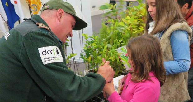 Diretora Regional dos Recursos Florestais incentiva crianças a cuidar de uma planta endémica