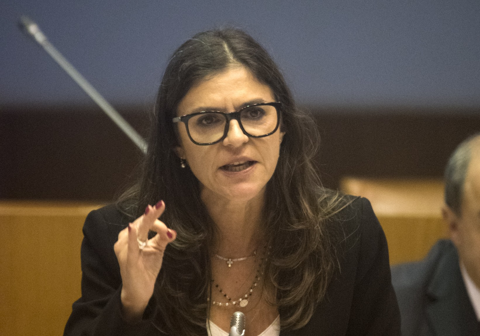 Proposta CDS-PP aprovada: Reformas antecipadas para agricultores voltam a vigorar nos Açores
