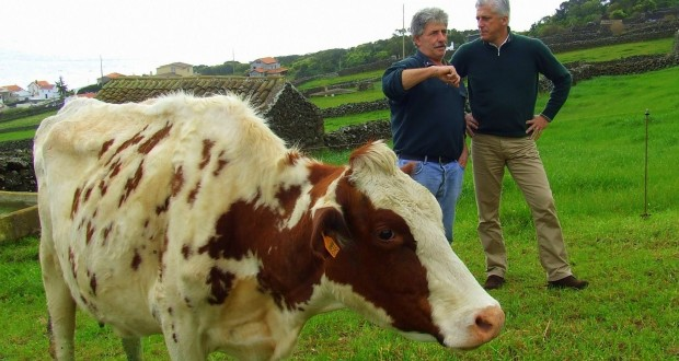 Duarte Freitas defende uma verdadeira Política Agrícola Regional para salvar os produtores de leite
