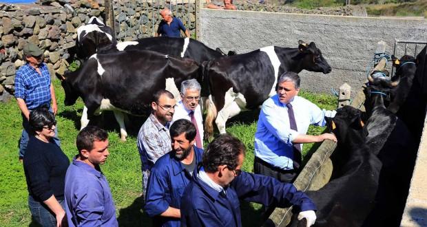 Governo dos Açores reforça apoio aos agricultores no combate às doenças de produção