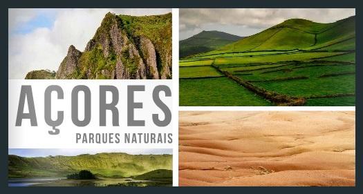 Parques Naturais dos Açores com nova plataforma de divulgação e promoção ambiental