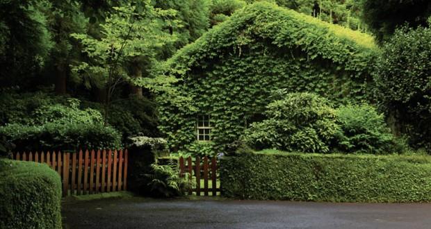 Governo dos Açores assinala Dia Regional do Guarda Florestal
