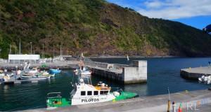 Pescadores jorgenses souberam ultrapassar facto de terem ficado sem quota de goraz a meio de 2016 (c/áudio)