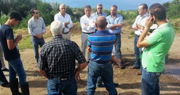 Investimento de três milhões de euros permite eletrificação de 105 explorações leiteiras, revela Neto Viveiros