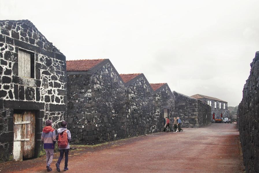 Casa dos Vulcões será ponto de partida para a exploração e conhecimento do património geológico, afirma Neto Viveiros