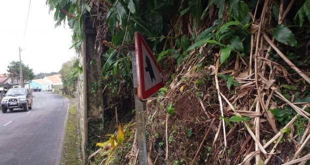 Catarina Cabeceiras preocupada com sinalização das estradas em São Jorge questiona Governo Regional sobre a segurança rodoviária na ilha