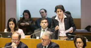 Deputados do PSD do Faial alimentam-se de alarmismo e derrotismo, acusa PS Açores