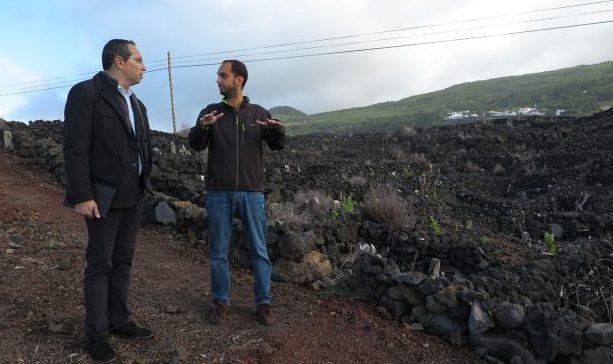 Candidaturas ao novo VITIS para apoio à reestruturação e reconversão das vinhas nos Açores superaram as expetativas, afirma João Ponte
