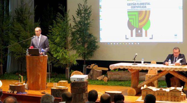 """Governo dos Açores adjudica """"muito em breve"""" venda de 155 hectares de madeira de criptoméria certificada, anuncia João Ponte"""