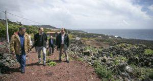 Os incentivos públicos à reabilitação da vinha ilha do Pico são um caso de sucesso económico, defende Miguel Costa