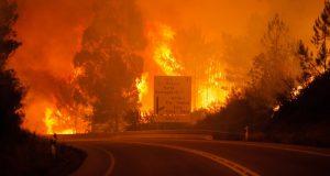 Governo dos Açores doa 100 mil euros e disponibiliza apoio do Serviço Regional de Proteção Civil e Bombeiros dos Açores