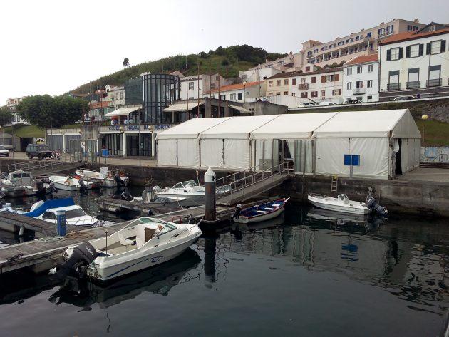 Festival Náutico da Horta arranca esta sexta-feira