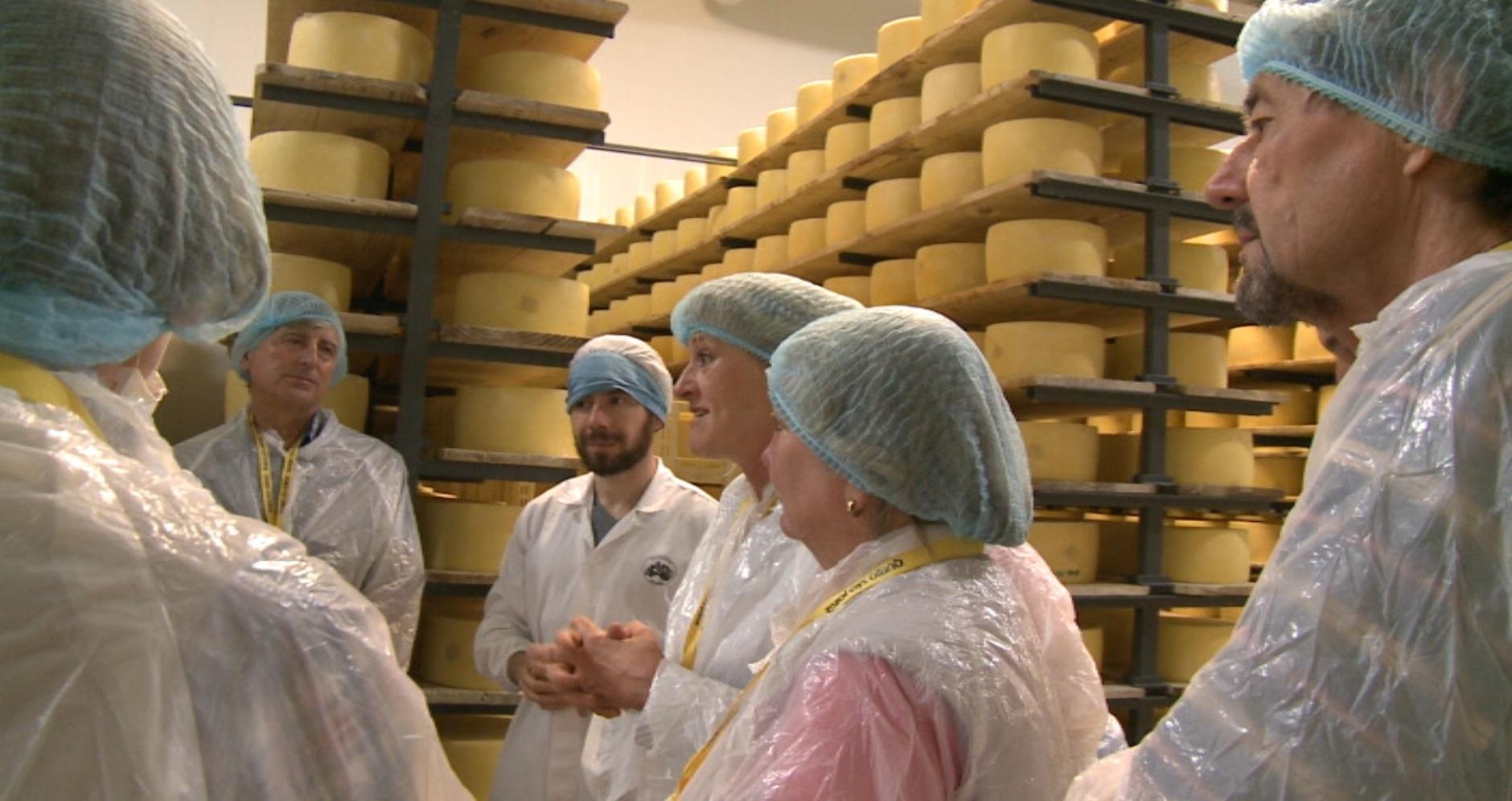 Turistas fascinados com a magia e o sabor do queijo de São Jorge depois de visitarem a Uniqueijo (c/áudio)