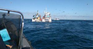 Inspeção Regional das Pescas realizou mais de 1.600 inspeções em 2017