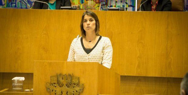 CDS-PP quer certificação de competências em São Jorge