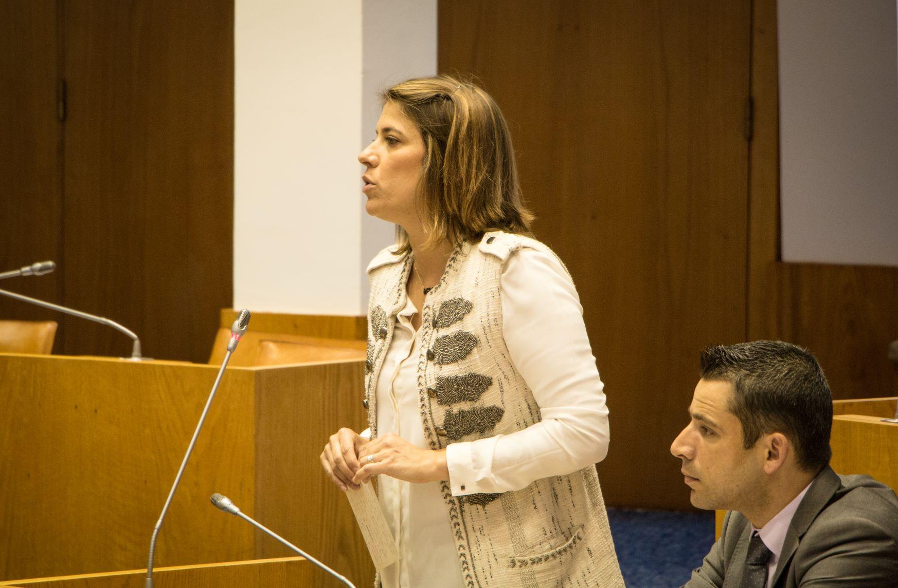 CDS requer inclusão da ilha de São Jorge na proposta para a reconversão de explorações de produção de leite em carne