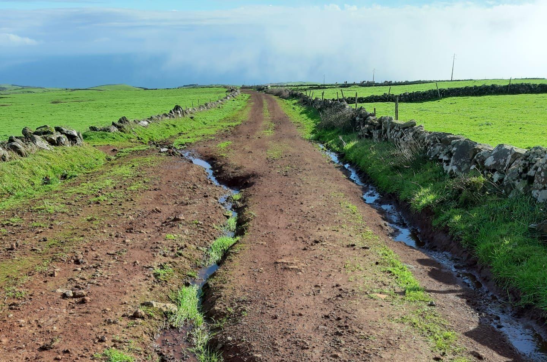 CDS-PP/Açores lamenta estado de degradação de caminhos agrícolas na ilha de São Jorge