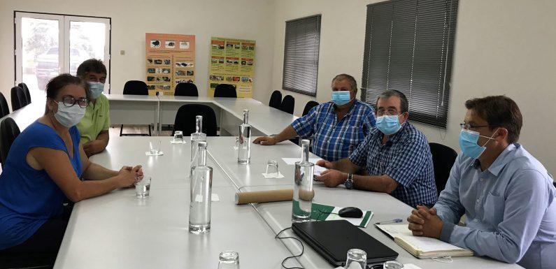 Governo dos Açores e a Associação Agrícola analisam projeto do parque para expedição de bovinos em São Jorge
