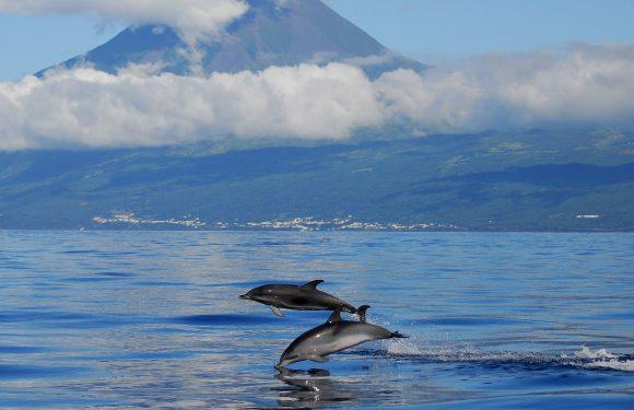 Açores deixam de ser considerados de 'alto risco' em mapas sobre viagens na União Europeia