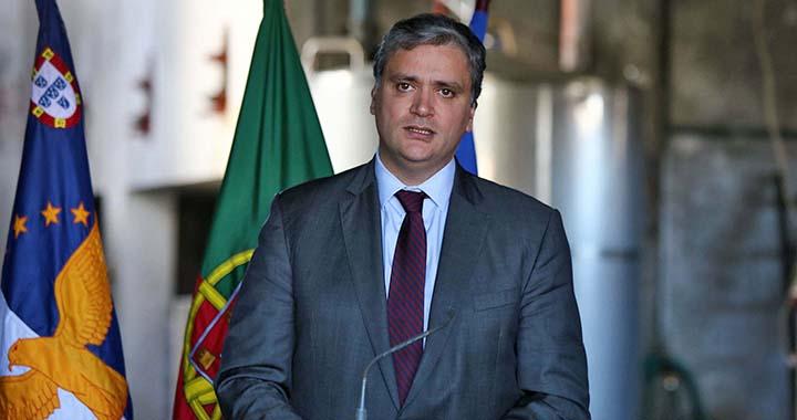 Vasco Cordeiro defende maior aproveitamento da vinha para criar mais emprego e riqueza