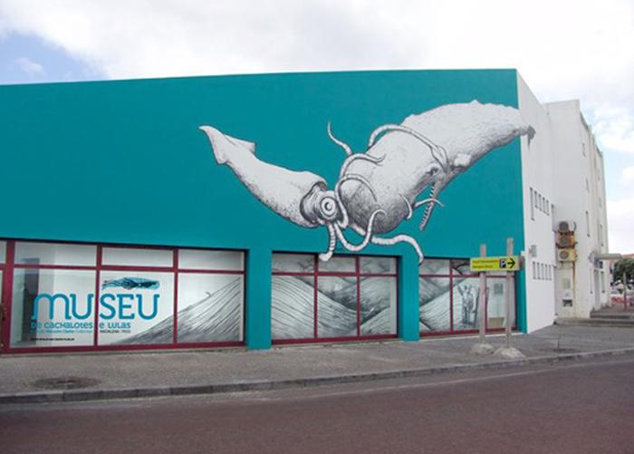 Ilha do Pico vai ter Museu de Cachalotes e Lulas