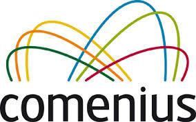Escola Básica e Secundária de Velas participa no programa europeu Comenius