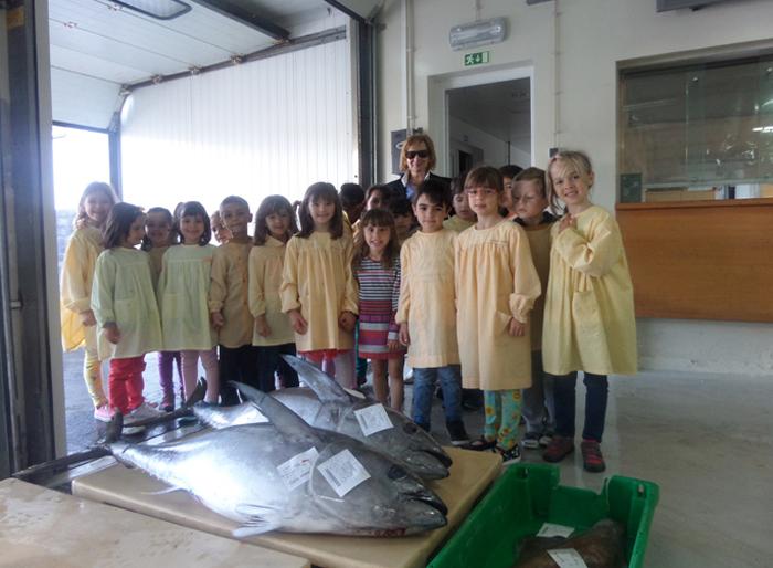 """Projeto """"A Escola vai à Pesca"""" sensibiliza os mais novos para o consumo de pescado"""