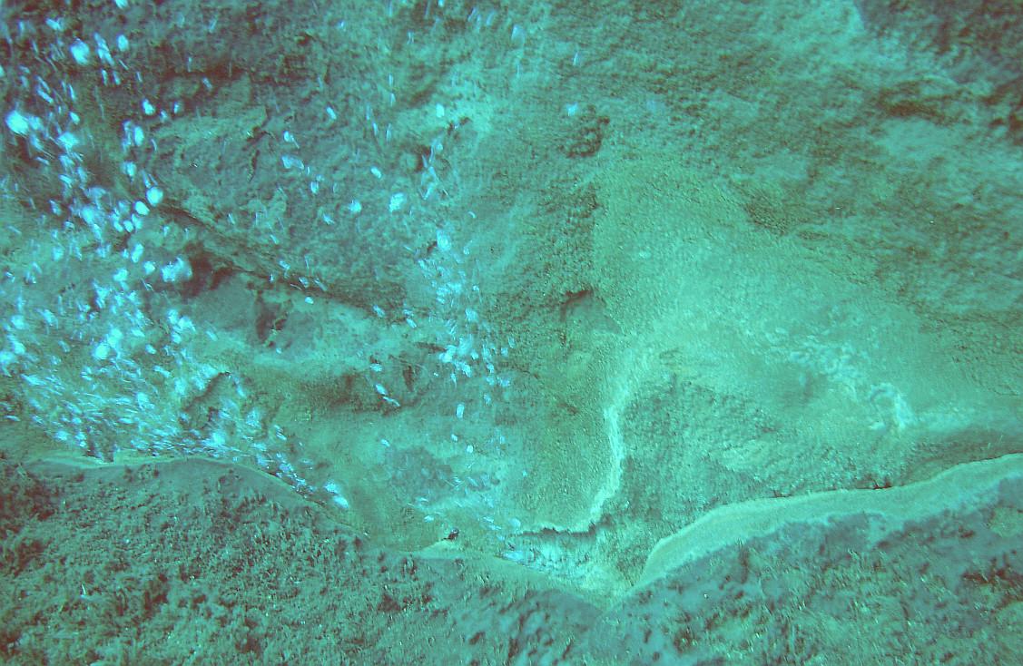 O Mar dos Açores é das áreas mais interessantes para exploração mineral, afirma Filipe Porteiro