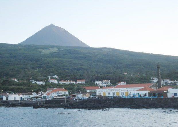 BE provoca debate no parlamento sobre relatório de acidente mortal em São Roque do Pico